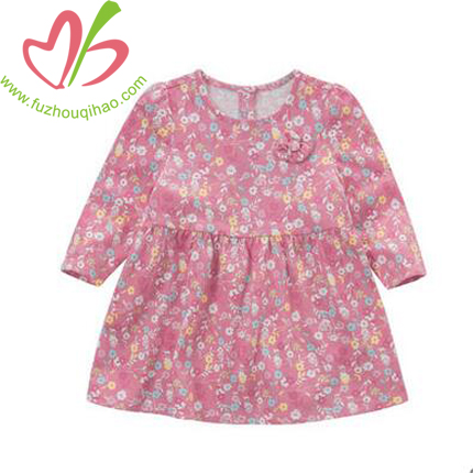 Baby Girl's Floral Print Yoke Dress